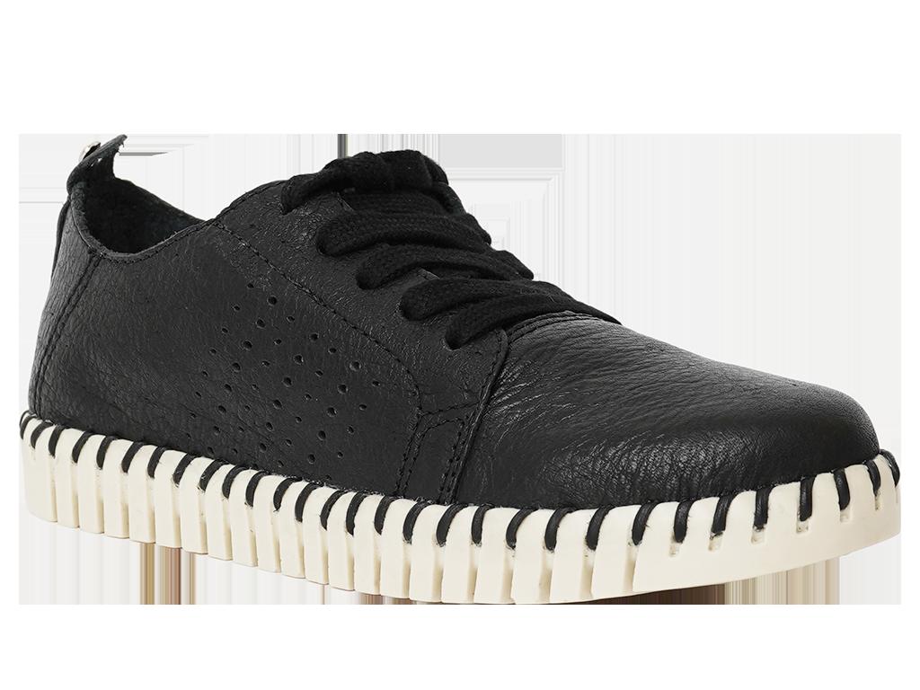 Zapato Cerrado Cuero Negro